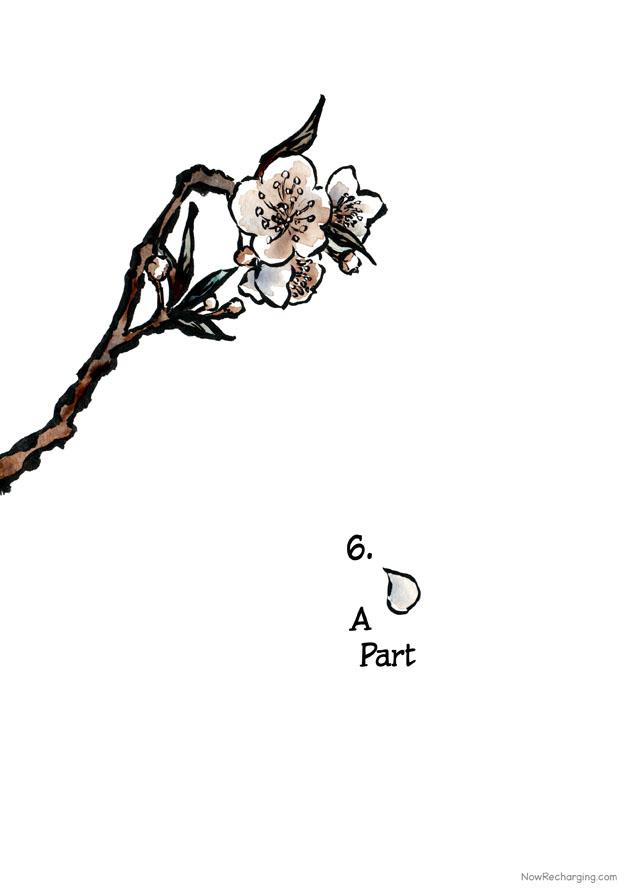 A branch of white plum blossoms. A single petal falls.